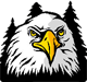 Kirk Elementary logo: eagle head in front of trees
